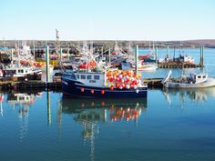 Eating All Of The Lobster: A 5-Day Nova Scotia Road Trip