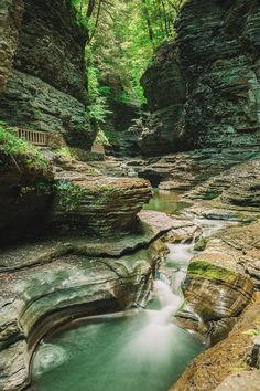 Best Hikes In New York State, watkins glen New York Travel, Travel Usa, The Places Youll Go, Places To See, Watkins Glen State Park, Upstate New York, Lake George, Best Hikes, Vacation Spots