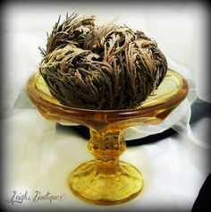 Rose of Jericho Resurrection Plant Hoodoo, Abundance, Blessings, Healing, Prosperity and Protection by leighswiccanboutique