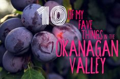 Ten things that make the Okanagan awesome.