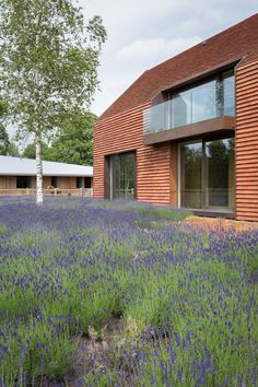 Contemporary Belgian barn house by Pascal François is covered in clay tiles
