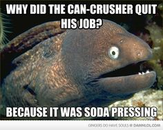 Bad Joke Eel these get me every time
