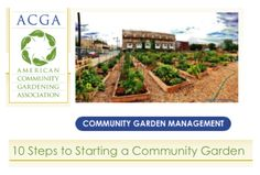 Joining or starting a community garden is a great way to meet your neighbors.