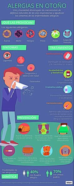 Alergia de interiores: un mal que se agudiza en otoño: Por el estilo de vida, aumentan cada vez más los casos. Con el otoño incrementan los…