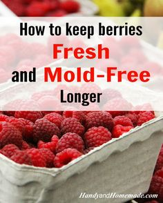"""How To Keep Berries Fresh And Mold-Free Longer With Vinegar. not sure I buy this, was always told """"not"""" to wash berries until I am ready to use them, but will try at least once Fruit Recipes, Cooking Recipes, Cooking Hacks, Recipies, Healthy Snacks, Healthy Recipes, Good Food, Yummy Food, Food Hacks"""