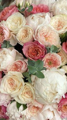 Cheap Flowers, Cut Flowers, Colorful Flowers, Beautiful Flowers Garden, Pretty Flowers, Floral Centerpieces, Floral Arrangements, Flowers Wholesale, Flower Iphone Wallpaper