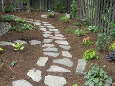 Rock Pathways paver pathway, hosta, and mulch | flowers grass and rocks oh my