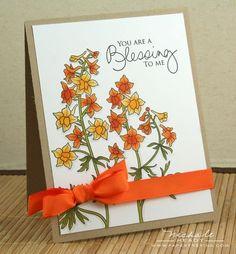 Larkspurs - love the 2-toned flowers