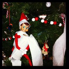 Our elf caught with the toilet paper