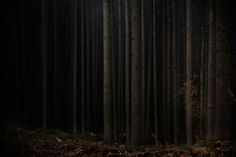Dark Places on Behance