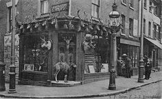 1900s Victorian Taxidermy Shop