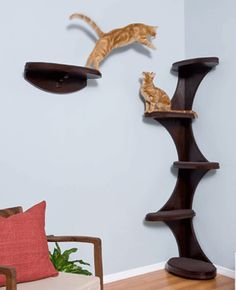 wood cat tree - Google Search