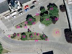 jedlé rostliny ve městě Brně - kde najít jedlé rostliny, plánek parčíku na Žerotínovo náměstí