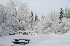 Kamienne Księgi #Szczawnica #Jaworki #Wąwóz #Homole #wycieczki #góry #Zima