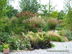 The grass garden in September