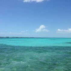 Belize blues