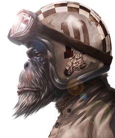 Discover several of my preferred builds - custom scrambler concepts like this Monkey Art, Monkey King, Motorcycle Art, Bike Art, Bayern Tattoo, Dessin Old School, Regard Animal, Cafe Racer Helmet, Gorilla Tattoo
