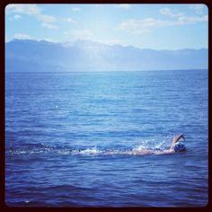 Big blue open; TransTahoe Relay; Team Sassmouth; open water swimming