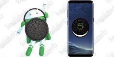 Aggiornamento Android Oreo Samsung Galaxy S8 ripreso ufficialmente  #follower #daynews - https://www.keyforweb.it/aggiornamento-android-oreo-samsung-galaxy-s8-ripreso-ufficialmente/