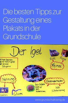 Die besten Tipps zur Gestaltung eines Plakats in der Grundschule für Referate und Co. #grundschulkönig #grundschule #referat #plakat #präsentation #präsentieren #gestaltung #deutsch #hsu #sachkunde