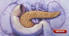 8 рецептов народной медицины для оздоровления поджелудочной железы