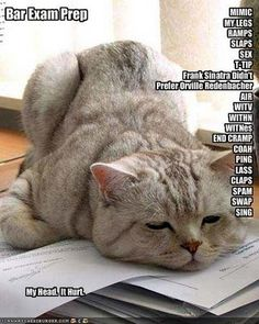 1000 images about law school bar exam on pinterest