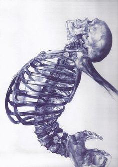 Incredible drawing done with a blue biro