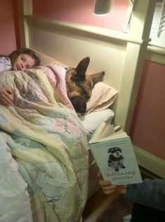 Sweet German Shepherd getting a bedtime story!