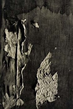 Aaron Siskind, Untitled (abstraction).