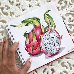 Драконий фрукт маркерами Copic. Alina Lemon. Pinapple Painting, Natural Form Art, Gcse Art Sketchbook, Copic Art, Drawing Activities, Pencil And Paper, Tropical Art, Color Pencil Art, Sketchbook Inspiration