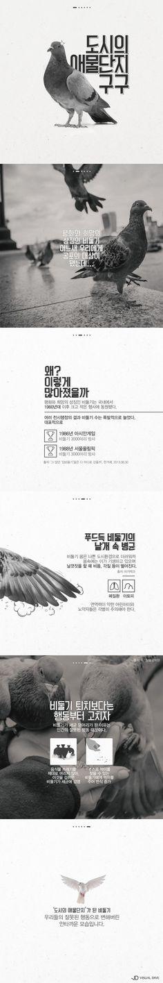 도시의 애물단지 비둘기[카드뉴스] #pigeon / #Infographic ⓒ 비주얼다이브 무단 복사·전재·재배포 금지