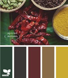 """""""spiced autumn"""" Color Pallette:: Like this for the kitchen:: Taupe and charcoal floor tiles, dried chili pepper red walls with safron and pine green accents (curtains, vases, etc.)"""