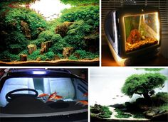 Holy Water! 24 Amazing Aquariums and Clever Fish Tanks | Urbanist