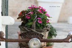 Ostuni Brindisi Puglia ....bicicletta shabby chic
