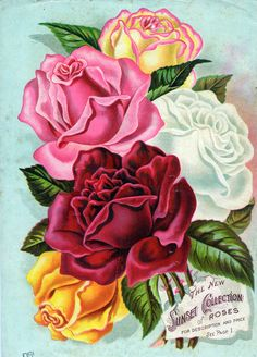 Antique Vintage Gül Posterleri_1_(42 Adet) | Dekupaj Desenleri