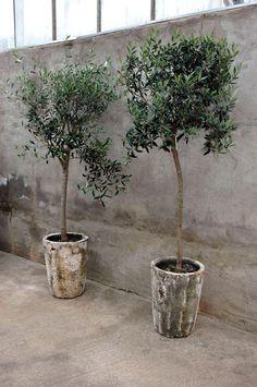 COUNTRY VILLA DECOR: Tuscan Style Decor Ideas