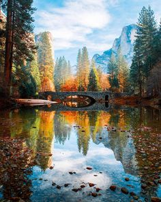 The Most Beautiful Places in Yosemite National Park California National Parks, Yosemite National Park, Beautiful Places, Beautiful Pictures, Beautiful Scenery, Beautiful Paintings, Amazing Places, Amazing Nature, Travel Inspiration