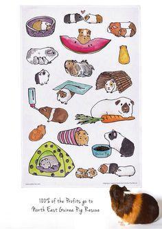 Watercolor Guinea pigs