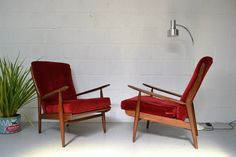 [Afromosia chairs, available through eBay]