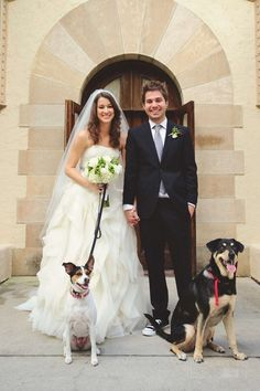 Charles & Alli Trippy withe their dogs, Zoey & Marley on their wedding day Perfect Wedding, Dream Wedding, Wedding Day, Charles Trippy, We The Kings, Shaytards, Perfect Relationship, Relationship Goals, Perfect Love