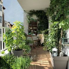 Private outdoor space is a dream of most people living in city apartments even if it's just a small balcony. Small Balcony Decor, Balcony Plants, Balcony Gardening, Balcony Ideas, Small Terrace, Small Balconies, Patio Ideas, Apartment Balcony Decorating, Apartment Balconies