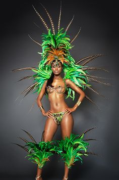 Secret Garden paparazzi Carnival Female Costume Trinidad Carnival 2015