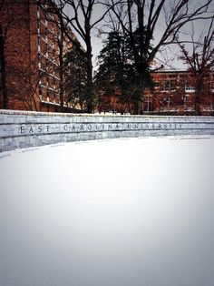 East Carolina University is one the best universities in North Carolina! It's a hidden gem!