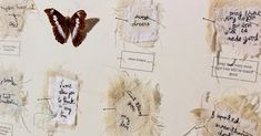 Ali Ferguson: From conception to creation - TextileArtist.org Reading Words, Old Letters, Art Articles, Largest Butterfly, Contemporary Embroidery, The Fragile, Back Stitch, Book Journal, Journals