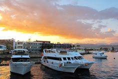 Naama Bay, Sharm el-Sheikh, Egypt