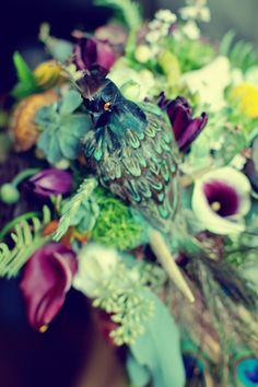 butterflies-turtleshells-peacocks12