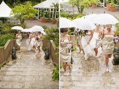 Cecilia Flaming Photography: Kyle & Julia: Enchanted Minter Gardens Wedding