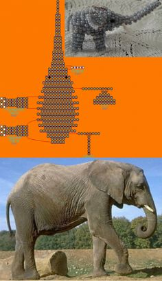 Фотография схемы бисероплетения - слон.