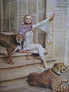 Model posting with cheetahs, photographed by Norman Parkinson for January 1969 Vogue magazine.