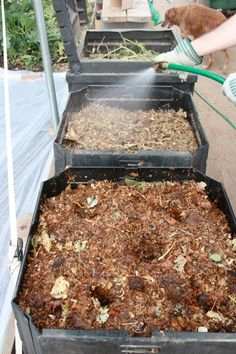A good garden needs nutrients. You can get those nutrients from a great compost. Here's a 3 bin composting system that almost anyone can use, even in a small area! The Homesteading Hippy #homesteadhippy #fromthefarm #composting #gardening